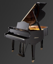 BLU 11 Ebony, polished